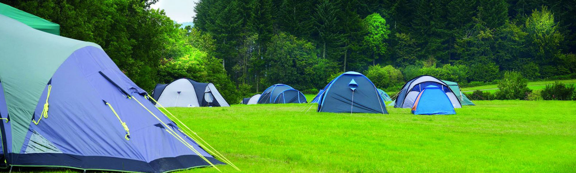 Camping, Glamping and Adventure Activities in Roscommon